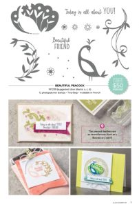 Beautiful Peacock stamp set with card examples