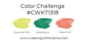 CWK71318 Color Challenge